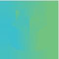holla-creative-site-icons-green-grad-Branding