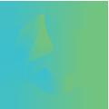 holla-creative-site-icons-green-grad-Campaign copy